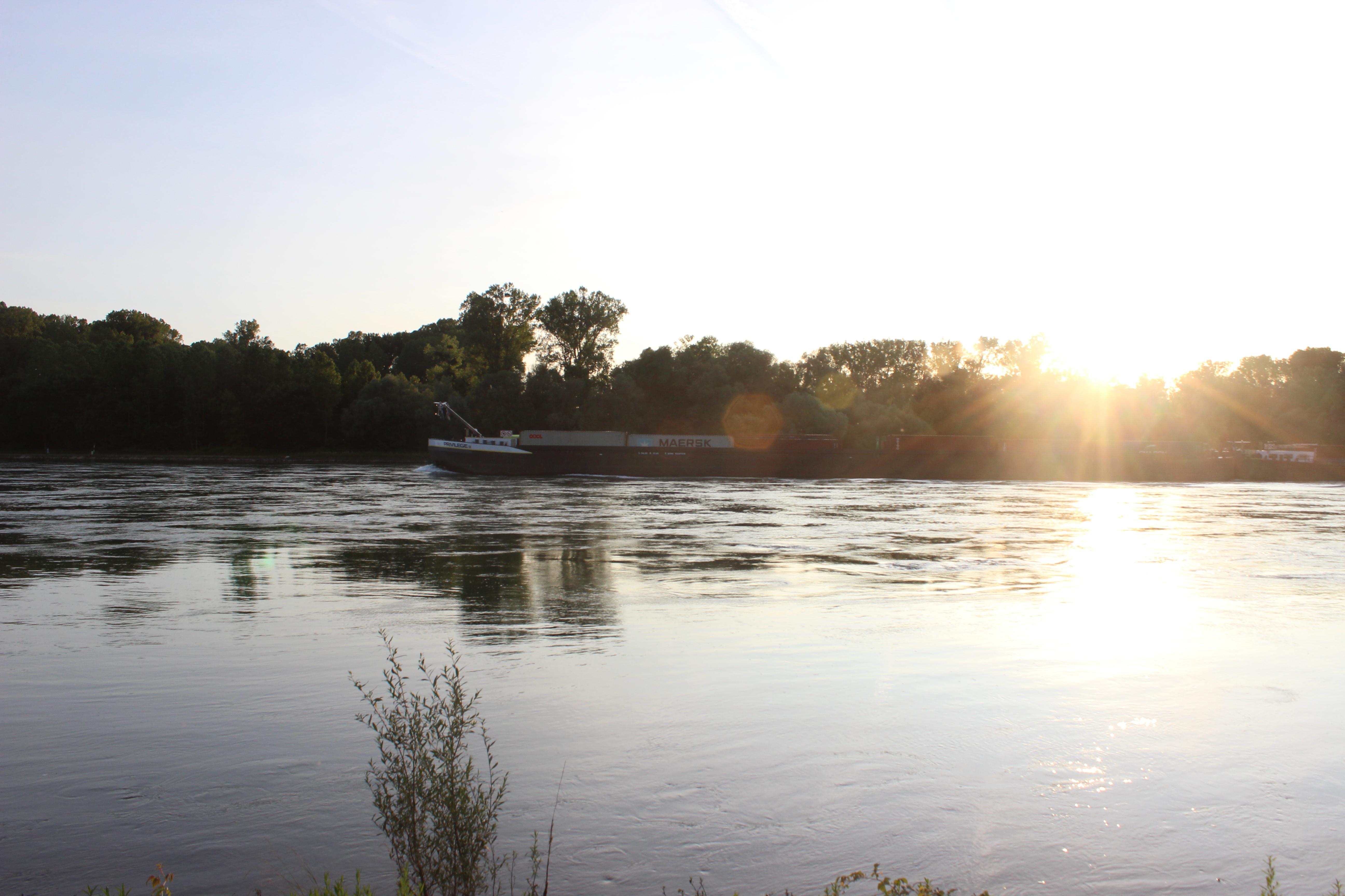 Abendstimmung über dem Rhein, was sonst